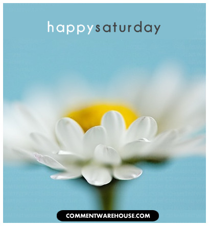 www.commentwarehouse.com/gallery3/var/albums/Days-of-the-week-graphics/Saturday-Graphics/saturday-happy-daisy.png