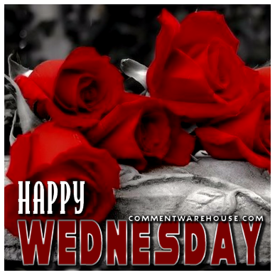 Happy Wednesday Red Roses Commentwarehouse Com