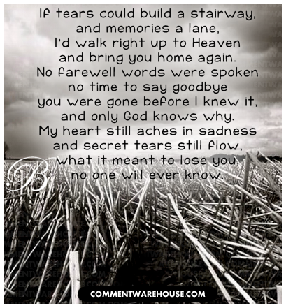Quote For Remembering Lost Loved Ones : quotes about remembering a loved one Quotes