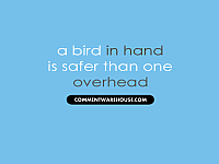 a bird in hand is safer than one quote