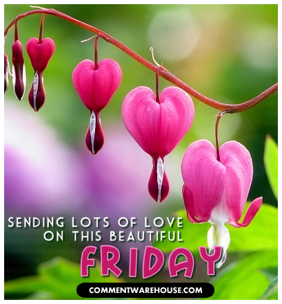 sending lots of love on this beautiful Friday heart blossoms