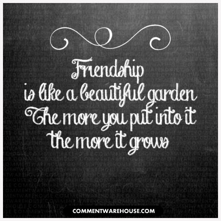Friendship is like a beautiful garden. The more you put into it the more it grows. | Friendship Graphics