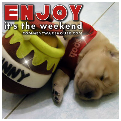 greeting_enjoy_its_the_weekend_pooh_pup.png