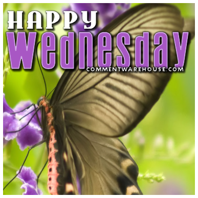 Happy Wednesday Butterfly