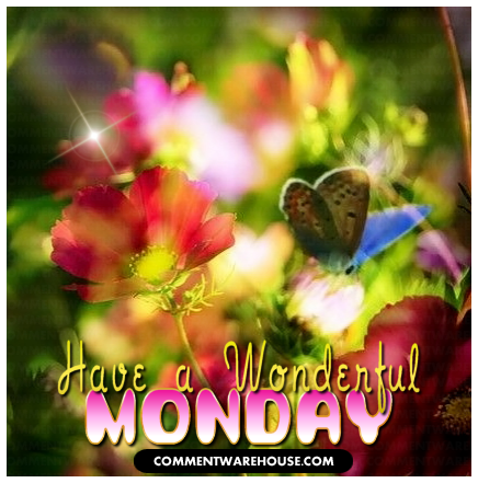 Have a wonderful Monday butterfly garden | Monday Graphic