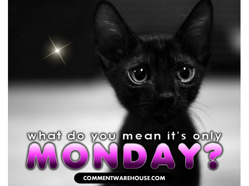 What do you mean it's only Monday? | Monday Graphic
