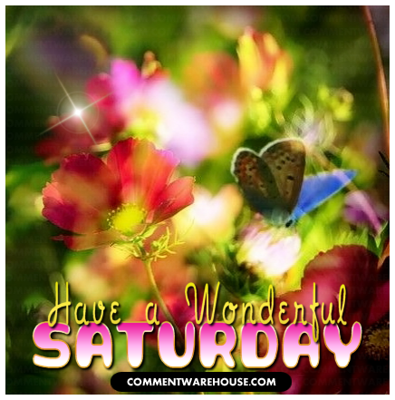 Have a Wonderful Saturday Butterfly Garden | Saturday Graphics