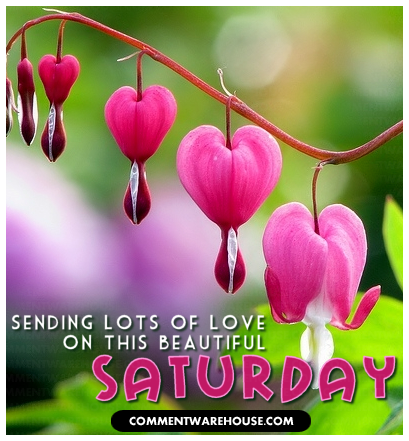 sending love on this beautiful Saturday heart blossoms