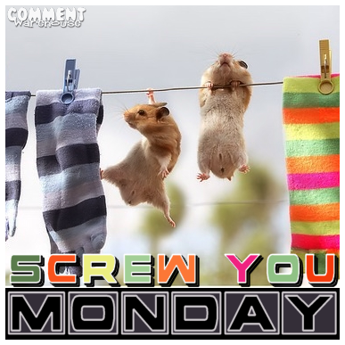 Screw you Monday Hamster problems | Monday Graphic