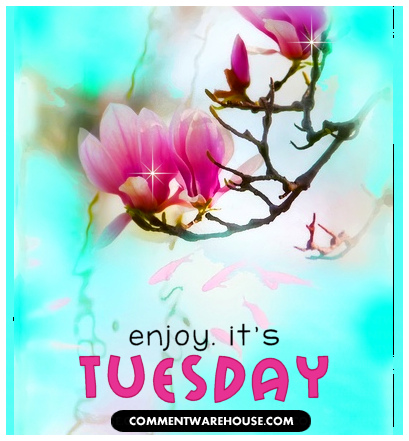 Enjoy it is Tuesday tree blossom | Tuesday Graphic