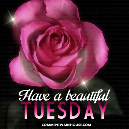 Have a beautiful Tuesday | Tuesday graphic