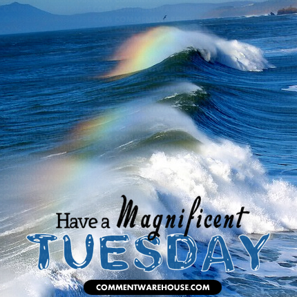 Have a magnificent Tuesday rainbow waves