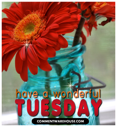 Have a wonderful Tuesday | Tuesday graphic