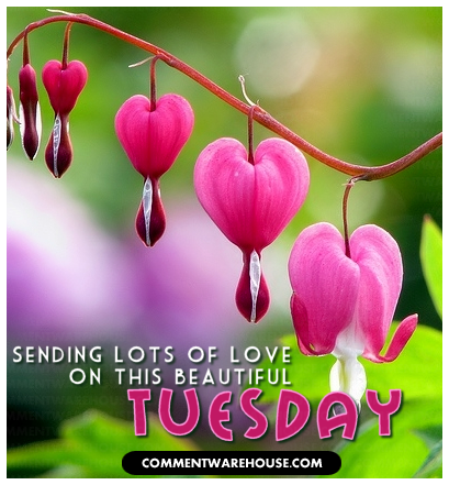 Sending lots of love on this beautiful Tuesday | Tuesday graphic