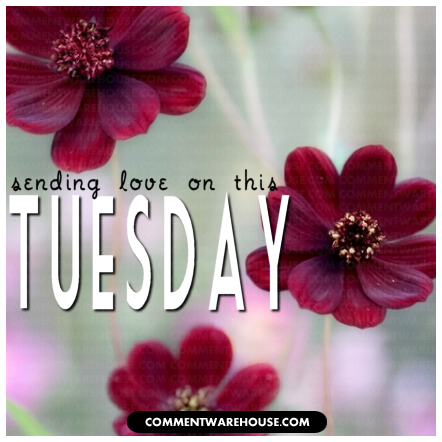 Sending love on this Tuesday | Tuesday graphic
