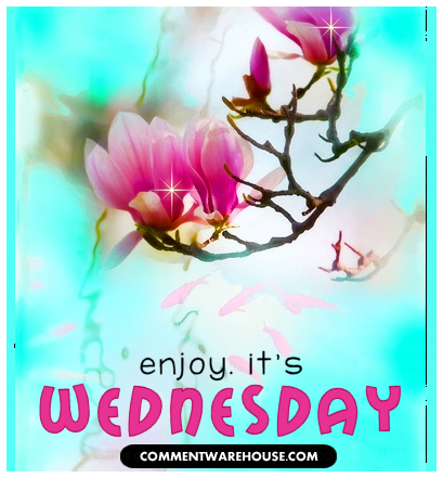 enjoy its Wednesday Blossom