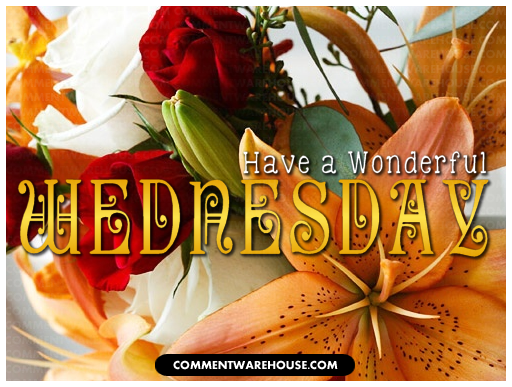 Have a Wonderful Wednesday Flowers