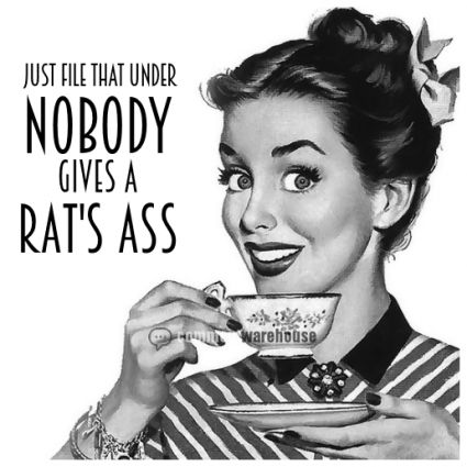 Just file that under nobody gives a rat's ass | Funny graphic