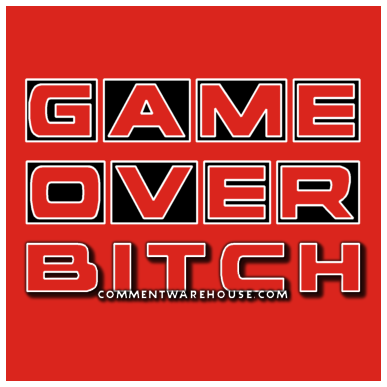 Game over bitch | funny graphics