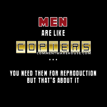 Men are like copiers - you need them for reproduction but that's about it | funny graphics
