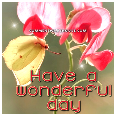 Have a wonderful day butterfly blossom Good Day Graphics