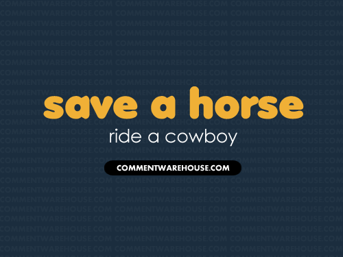 Save a horse ride a cowboy | Funny Graphics