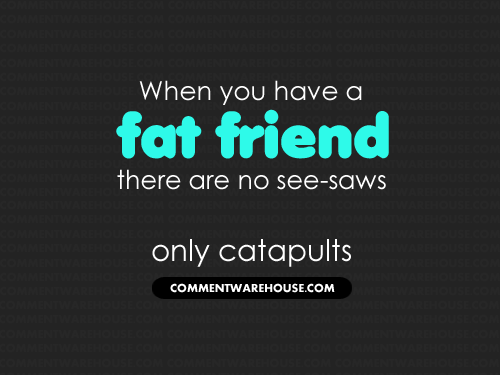 When you have a fat friend there are no see-saws only catapults | Funny Graphics