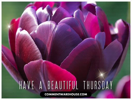 Have A Beautiful Thursday | Thursday Graphics