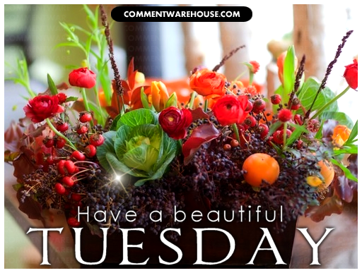 Have A Beautiful Tuesday | Tuesday Graphics