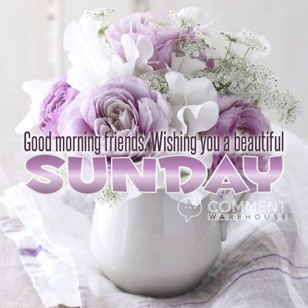 Good morning friends wishing you a beautiful Sunday | Sunday Graphics | Days of the Week Graphics