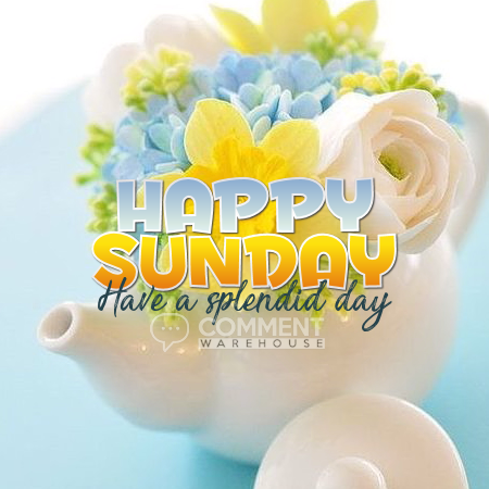 Happy Sunday Have a Splendid Day | Sunday Graphics | Days of the Week Graphics
