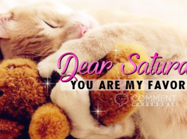 Dear Saturday You are my Favorite | Saturday Comments & Graphics