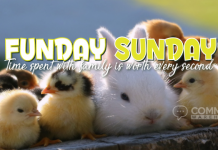 Funday Sunday! Time spent with family is worth every second | Sunday Comments & Graphics