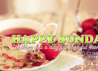 Happy Sunday - Wishing you a day full of joyful moments | Happy Sunday Comments & Graphics