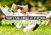 Today's Plan: A Whole Lot of Nothing. Happy Sunday   Happy Sunday Comments & Graphics