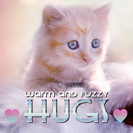 Warm and fuzzy hugs | Hug Comments & Graphics