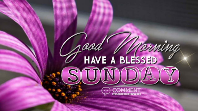 Good Morning Have a Blessed Sunday | Sunday Graphics | Sunday Comments