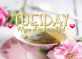 Tuesday Hope It Is Beautiful | Tuesday Comments & Graphics