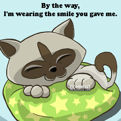 By the way I am wearing the smile you gave me | Compliment Comments and Graphics