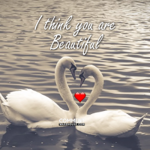 I think you are beautiful | Compliment Comments and Graphics