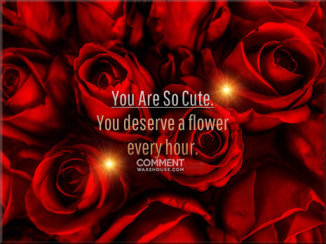 You are so cute - You deserve a flower every hour | Compliment comments and graphics