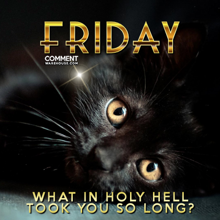 Friday what in holy hell took you so long | Friday Comments and Graphics