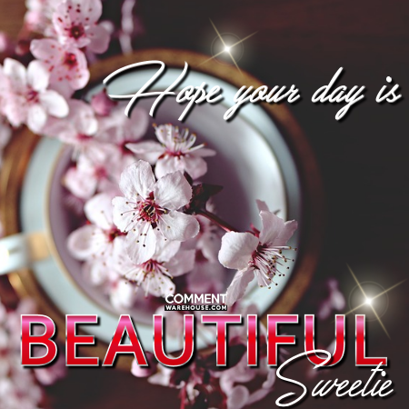 Hope Your Day is Beautiful Sweetie | Good Day Comments and Graphics