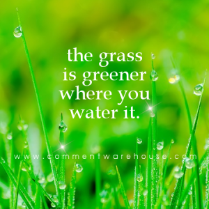 The grass is greener where you water it | Quote Graphics