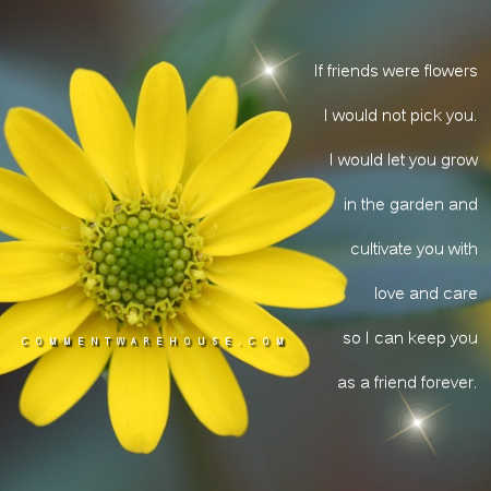If friends were flowers, I would not pick you. I would let you grow in the garden and cultivate you with love and care so I can keep you as a friend forever. | Quotes about friendship