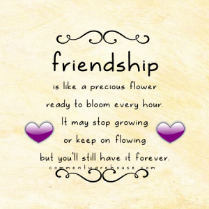 Friendship is like a precious flower ready to bloom every hour. It may stop growing or keep on flowing but you'll still have it forever | Friendship Quote