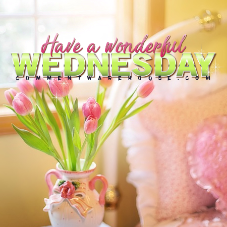 Have a Wonderful Wednesday | Wednesday Comments and Graphics