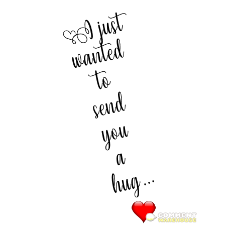 I Wanted To Send You A Hug Commentwarehouse Say It With A Pic