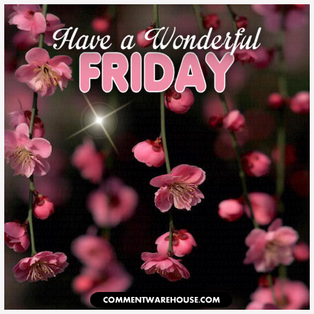 Have a wonderful Friday | Happy Friday Images & Graphics
