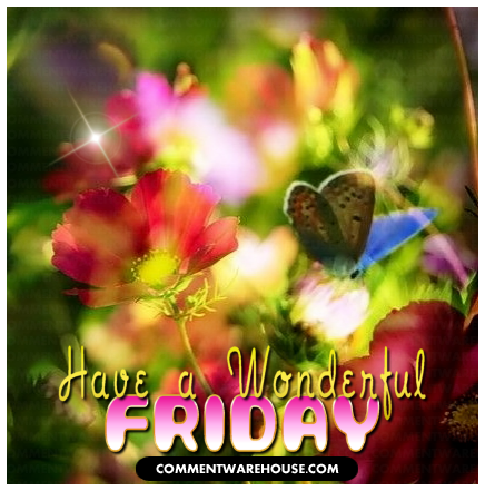 Have a Wonderful Friday! | Happy Friday Graphics & Images